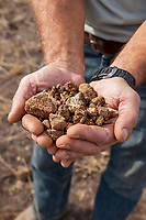 Introduction to Grassland Soils - California Native Grassland Association soils workshop with Vic Claassen (UC Davis)