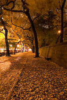 AVAILABLE FROM JEFF AS A FINE ART PRINT.<br />