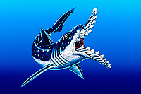 illustration, artists rendition of Edestus giganteus, giant Paleozoic scissor tooth shark, known only from fossilized tooth rows 300 MYA, prehistoric shark
