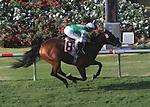 July 22, 2009.Afleet Eagle riden by Tyler Baze wins the Oceanside Stakes at Del Mar Racetrack, Del Mar, CA