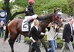 Point of Entry, ridden by John Velazquez, wins the Joe Hirsch Turf Classic Invitational Stakes (GI) at Belmont Park in Elmont, New York on September 29, 2012.  (Bob Mayberger/Eclipse Sportswire)