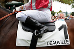August 15, 2021, Deauville (France) - Saddle cloth for #1 with Jockey Sebastien Maillot at the Deauville Racecourse. [Copyright (c) Sandra Scherning/Eclipse Sportswire)]