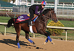 Aruna, trained by Graham Motion and to be ridden by Ramon Dominguez , exercises in preparation for the 2011 Breeders' Cup at Churchill Downs on October 31, 2011.