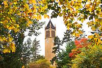 Iowa State University Fall Colors