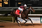 January 16, 2021: Midnight Bourbon wins the Lecomte Stakes Day at Fair Grounds Race Course in New Orleans, Louisiana. Parker Waters/Eclipse Sportswire/CSM