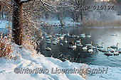 Marek, CHRISTMAS LANDSCAPES, WEIHNACHTEN WINTERLANDSCHAFTEN, NAVIDAD PAISAJES DE INVIERNO, photos+++++,PLMP01019Z,#xl#