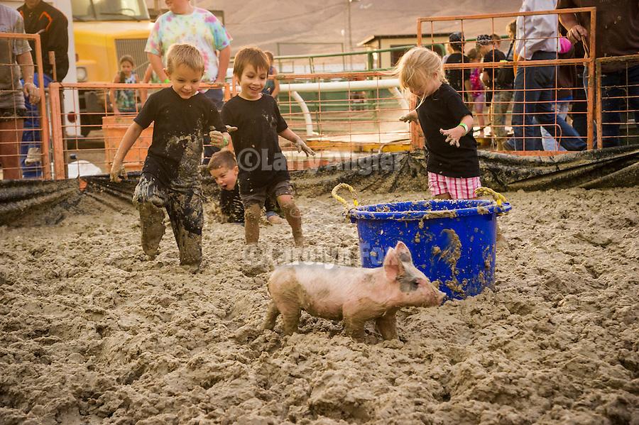 Winnemucca's Tri County Fair, Labor Day weekend..Pig Wrestling