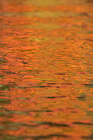 """Fall Color Abstracts III""<br />
