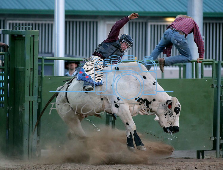 Billy Quine competes in the bull riding event at the Smackdown Tour at Fuji Park in Carson City, Nev., on Saturday, June 7, 2014.<br /> Photo by Cathleen Allison