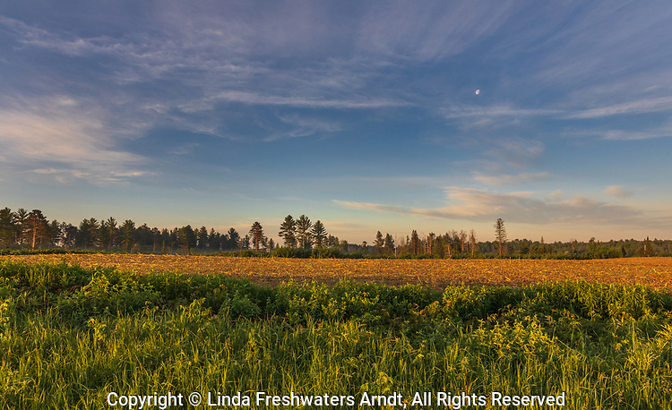 The moon and clouds over a cut corn field in northern Wisconsin.