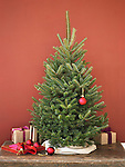Small Christmas tree against a red wall, with ornaments and wrapped gifts