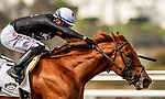 AUGUST 20, 2021: Forbidden Kingdom with Juan Hernandez wins a maiden race at Del Mar Fairgrounds in Del Mar, California on August 20, 2021. Evers/Eclipse Sportswire/CSM