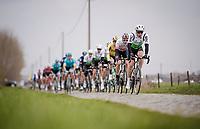 peloton over the cobbles<br /> <br /> 43rd Driedaagse Brugge-De Panne 2019 <br /> One day race (1.UWT) from Brugge to De Panne BEL (200km)<br /> <br /> ©kramon