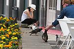 Street scenes in Ponta Delgada, Sao Miguel, Portugal, the target island in the Azores.