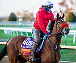 November 3, 2020: Lady Prancealot, trained by trainer Richard Baltas, exercises in preparation for the Breeders' Cup Filly & Mare Turf at Keeneland Racetrack in Lexington, Kentucky on November 3, 2020. Jon Durr/Eclipse Sportswire/Breeders Cup