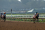 """DEL MAR, CA  AUGUST 25:  #1 Catalina Cruiser, ridden by Drayden Van Dyke, with and impressive margin of victory in the Pat O'Brien Stakes (Grade ll), Breeders' Cup """"Win and You're In Dirt Mile Division"""" on August 25, 2018 at Del Mar Thoroughbred Club in Del Mar, CA.(Photo by Casey Phillips/Eclipse Sportswire/Getty ImagesGetty Images"""