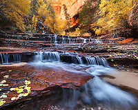 A cascade over sandstone in the wilderness of Zion National Park.<br /> <br /> 24x30 MetalPrint<br /> List Price: $429<br /> Sale Price: $249<br /> You Save: $180 (42%)<br /> Items in Stock: 1<br /> *Tiny bend lower right corner