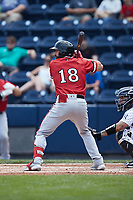 Jake Noll (18) of the Rochester Red Wings at bat against the Scranton/Wilkes-Barre RailRiders at PNC Field on July 25, 2021 in Moosic, Pennsylvania. (Brian Westerholt/Four Seam Images)