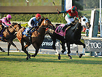 Oct. 15, 2011.Ultimate Eagle ridden by Martin Pedroza, crossing the finis line and winning the Oak Tree Derby at Santa Anita Park, Arcadia, CA
