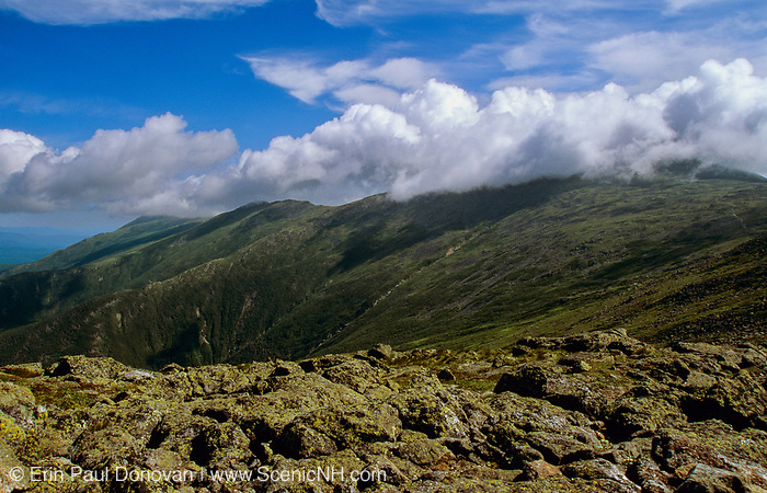 Mount Washington engulfed in cloud cover from along the Appalachian Trail (Crawford Path) in Sargent's Purchase in the New Hampshire White Mountains.