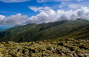 Mount Washington engulfed in cloud cover from along the Appalachian Trail (Crawford Path), in Sargent's Purchase in the New Hampshire White Mountains.