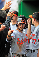 24 May 2009: Baltimore Orioles' second baseman Brian Roberts celebrates scoring after an Adam Jones homer during a game against the Washington Nationals at Nationals Park in Washington, DC. The Nationals rallied to defeat the Orioles 8-5 and salvage a win in their interleague series. Mandatory Credit: Ed Wolfstein Photo