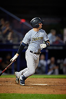 Trenton Thunder Kellin Deglan (11) bats during an Eastern League game against the Reading Fightin Phils on August 16, 2019 at FirstEnergy Stadium in Reading, Pennsylvania.  Trenton defeated Reading 7-5.  (Mike Janes/Four Seam Images)