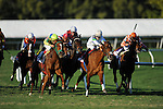 Trip For AJ with John R Velazquez won Sunshine Million Filly and Mare Turf.at Gulfstream Hallendale, FL 01.29.2011