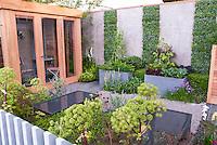 Modern Vegetable Garden, with raised beds, patio, Angelica herbs, chives, cabbage, climbing beans, house, fence, reflecting pools, flowers and perennials, red letuuce