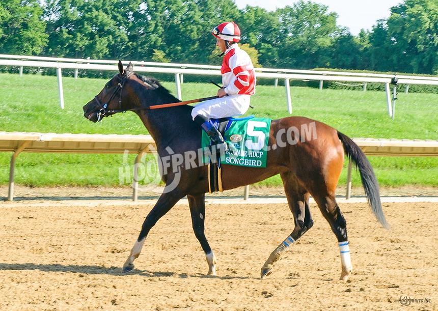 Songbird after winning The grade 1 Delaware Handicap at Delaware Park on 7/15/17