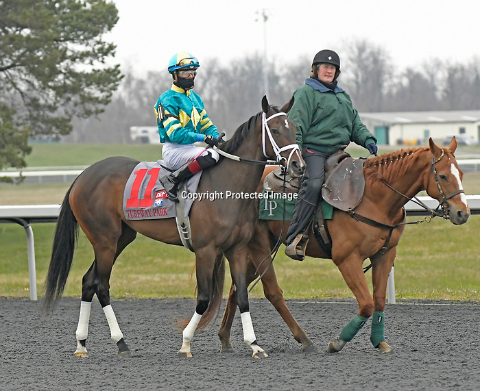 FLORENCE, KY - MARCH 17: #11 Go Noni Go, ridden by Tyler Gaffalione wins the G3 DRF Bets Bourbonette Oaks on Jeff Ruby Steaks Stakes day at Turfway Park on March 17, 2018 in Florence, KY. (Photo by Jessica Morgan/Eclipse Sportswire/Getty Images)