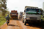 African Golden Cat (Caracal aurata aurata) researcher, David Mills, riding motorbike near mining trucks, Kibale National Park, western Uganda