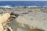 Strand in Sliema, Malta, Europa