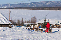 Middie Johnson heads towards the Yukon River after leaving the Ruby checkpoint during the 2010 Iditarod