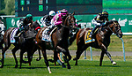 June 5, 2021: Casa Creed, #2, ridden by jockey Junior Alvarado, wins the Jackpot Jaipur Win and You're In Stakes on Belmont Stakes Day at the Belmont Stakes Festival at Belmont Park in Elmont, New York. Dan Heary/Eclipse Sportswire/CSM