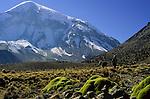 En route to base camp of Nevado Sajama (6549 m), Bolivia, 1999.