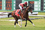 NEW ORLEANS, LA - MARCH 26: Take the Stand #1 ridden by Edgar S. Prado wins the Mervin H. Muniz Handicap at Fairgrounds Race Course on March 26, 2016 in New Orleans, Louisiana. (Photo by Steve Dalmado/Eclipse Sportswire/Getty Images)