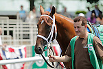Artest, a son of Hard Spun trained by Rick Dutrow Jr. and ridden by Ramon Dominguez, walks in the paddock before winning race 3, a 5-furlong contest for maiden 2-year-olds at Belmont Park, Elmont, NY on June 10, 2011. (Joan Fairman Kanes/Eclipsesportswire)