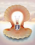 Illustrative image of light bulb in shell representing ideas