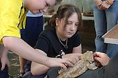 A girl strokes a Bearded Dragon lizard at Church Street Summer Festival 2005, Paddington, London.