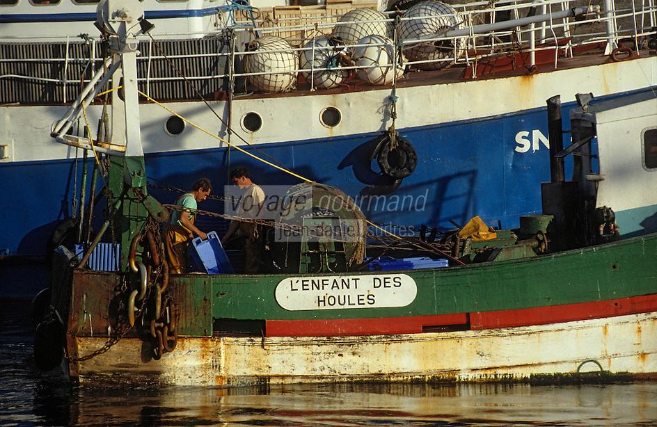 Europe/France/Pays de la Loire/44/Loire-Atlantique/La Turballe: Le port