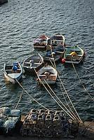 Europe/France/Bretagne/29/Finistère/Le Conquet:  Annexe des caseyeurs et casiers  pour la pêche aux crustacés sur le port
