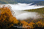 Morning Mist, Little Pine Creek Valley, Tiadaghton State Forest, Pennsylvania