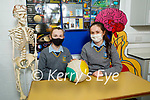 Megan Lynch and Paula Carmody students in Tarbert Comprehensive School who are studying how extra curricular affect grades in school for the BT Young Scientist Exhibition.