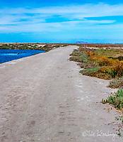 Bay Trail Map 6 - Alviso