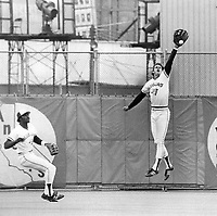 Blue Jays' Danny Ainge, showing great leaping ability, just fails to hang on to drive from Royals' George Brett at Exhibition Stadium yesterday. Kansas City won, 11-5.