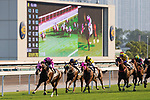 Jockey Zac Purton riding #1 Beauty Generation (L) during Hong Kong Racing at Sha Tin Racecourse on October 01, 2018 in Hong Kong, Hong Kong. Photo by Yu Chun Christopher Wong / Power Sport Images