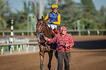 """September 26, 2015: Smooth Roller with Tyler Baze up win the Breeders' Cup """"Win and You're In"""" Awesome Again Stakes at Santa Anita Park in Arcadia, California. Zoe Metz/ESW/CSM"""