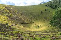 France, Puy de Dome, Volcans d'Auvergne Regional Natural Park, Chaine des Puys listed as World Heritage by UNESCO, Orcines, Puy Pariou volcano, crater // France, Puy-de-Dôme (63), Orcines, Parc Naturel Régional des Volcans d'Auvergne, Chaîne des Puys classée Patrimoine Mondial de l'UNESCO, le volcan Puy Pariou, cratère