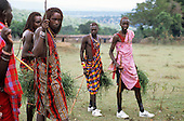 Lolgorian, Kenya. Siria Maasai; moran warriors bringing medicinal grasses for Eunoto coming of age ceremony.